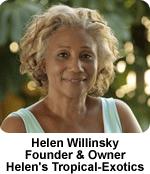helen_willinsky